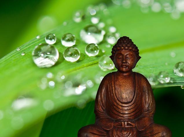 buddha-581150_1920